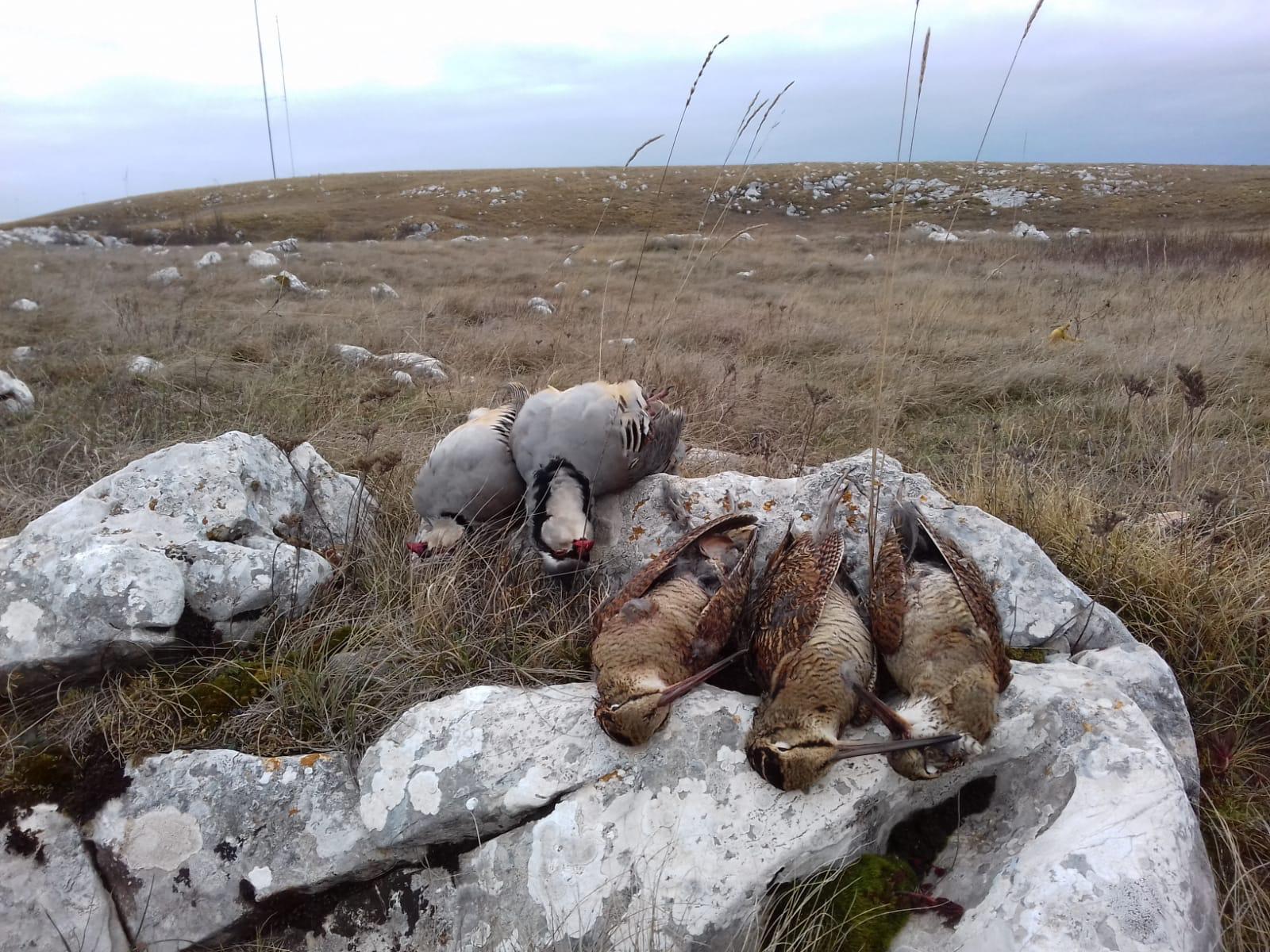caccia in bosnia